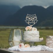 Owl birthday cake topper by Thistle and Lace Designs Inc
