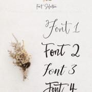 Font Selection