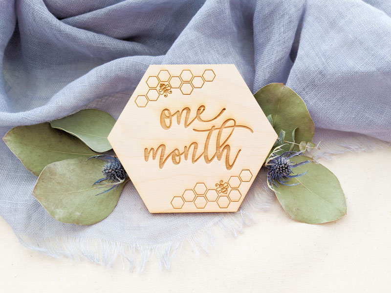 Bee Baby Milestone Cards by Thistle and Lace Designs Inc