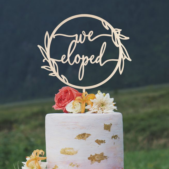 We Eloped Cake Topper